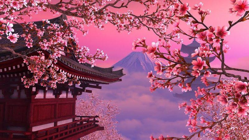 Japanska trešnja